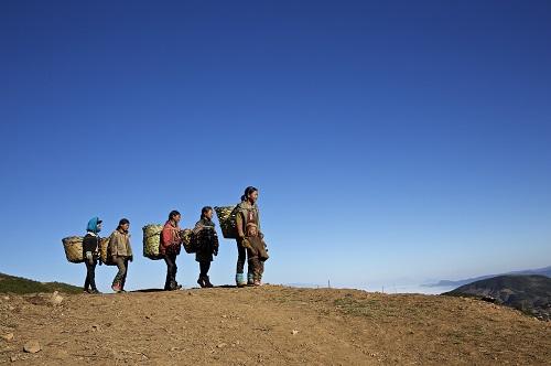 Sichuan province, Binnen Mongolië