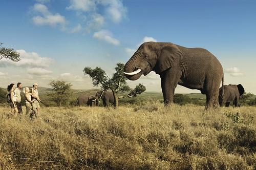 Zuid-Afrika, de Regenboognatie