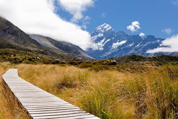 Dag 22 - Nieuw-Zeeland