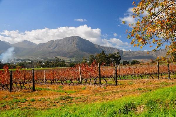 Dag 22 - Zuid-Afrika o.l.v. Netty Ruijgh