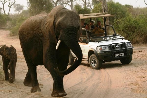 Dag 3 - Namibië